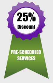 Prescheduled IT Services